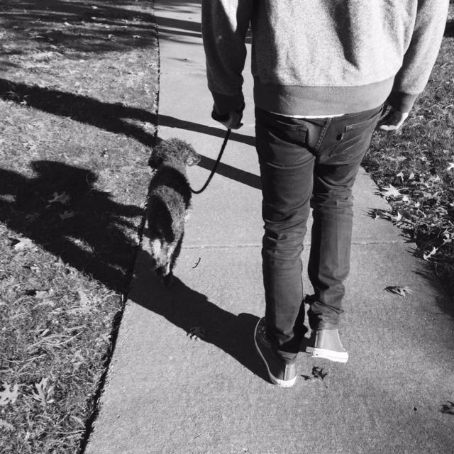 walking_dog