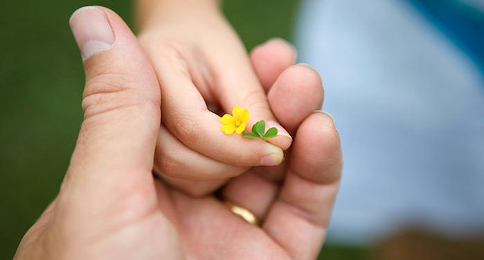 dając kwiat
