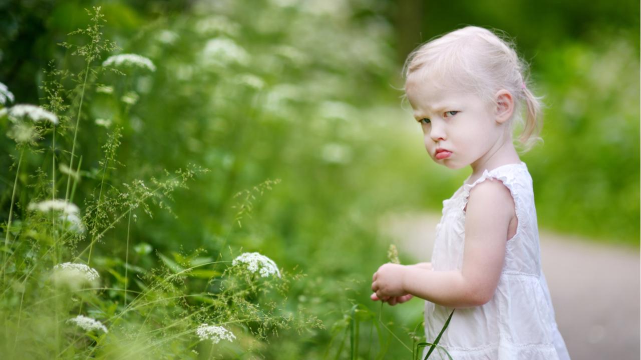 Zła mała dziewczynka w polu